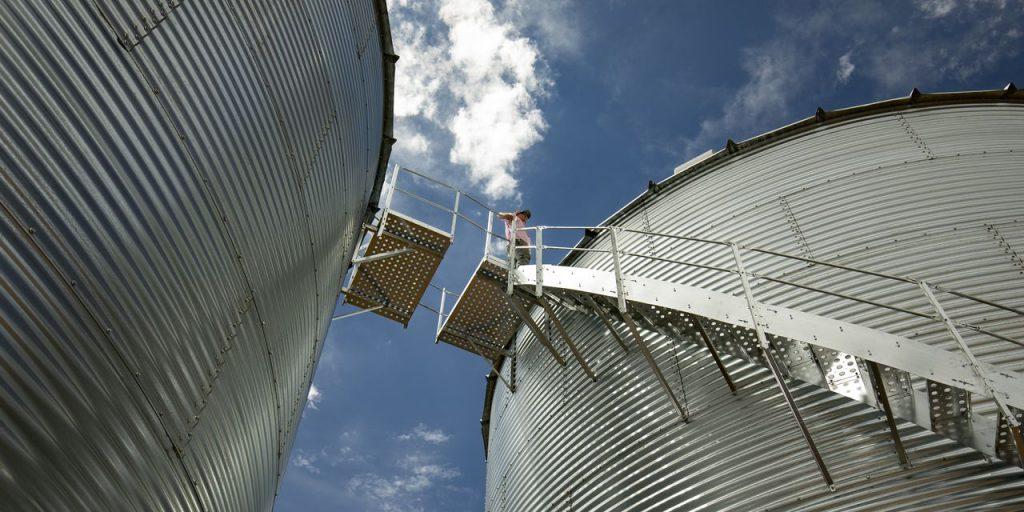 Como uma startup de tecnologia agrícola de um bilhão de dólares tropeçou e depois renovou